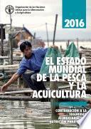 2016 EL ESTADO MUNDIAL DE LA PESCA Y LA ACUICULTURA