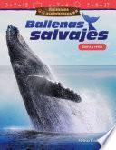 Animales asombrosos: Ballenas salvajes: Suma y resta (Amazing Animals: Wild Whales: Addition and Subtraction)