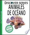 Animales de Océano