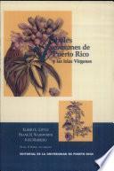 Árboles comunes de Puerto Rico y las Islas Vírgenes