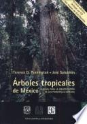Arboles tropicales de México