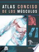 ATLAS CONCISO DE LOS MÚSCULOS (Color)
