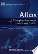 Atlas de Ciliados Y Otros Microorganismos Frecuentes en Sistemas
