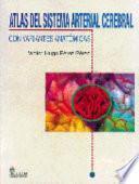 Atlas del sistema arterial cerebral con variantes anatÃ3micas