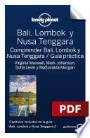 Bali, Lombok y Nusa Tenggara 2_12. Comprender y Guía práctica