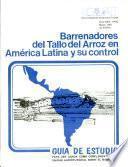 Barrenadores del tallo del arroz en América Latina y su control