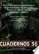 Bejucos y otras trepadoras de la Estación de Biología Tropical Los Tuxtlas, Veracruz, México