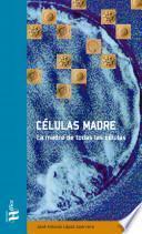Células Madre: la madre de todas las células