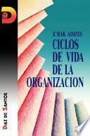 Ciclos de vida de la organización