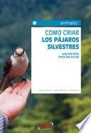 Cómo criar los pájaros silvestres. Alimentación, reproducción y cuidados