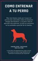 Como Entrenar A Tu Perro