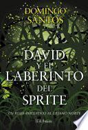 David y el laberinto del sprite