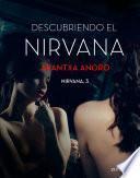 Descubriendo el Nirvana