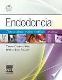 Endodoncia + StudentConsult en español
