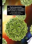 Enfermedades de plantas causadas por virus y viroides
