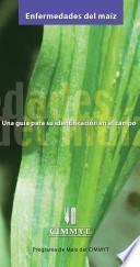 Enfermedades del maiz: una guia para su identificacion en el campo