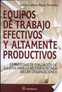 Equipos de trabajo efectivos y altamente productivos