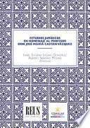 Estudios jurídicos en homenaje al profesor don José María Castán Vázquez