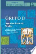 Grupo B. Ayuntamiento de Sevilla. Temario Materias Comunes.e-book.