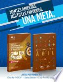 Guide to the Project Management Body of Knowledge (PMBOK(R) Guide-Sixth Edition / Agile Practice Guide Bundle (SPANISH)