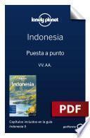 Indonesia 5_1. Preparación del viaje