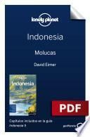 Indonesia 5_5. Molucas