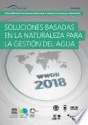 Informe mundial de las Naciones Unidas sobre el desarrollo de los recursos hídricos 2018