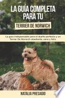 La Guía Completa Para Tu Terrier De Norwich