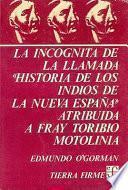 La incógnita de la llamada Historia de los indios de la Nueva España atribuida a fray Toribio Motolinía