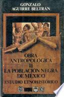 La población negra de México