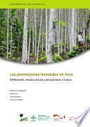 Las plantaciones forestales en Perú