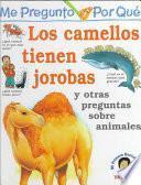 Los Camellos Tienen Jorobas