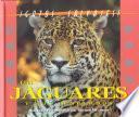 Los Jaguares Y Los Leopardos