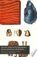Los tres reinos de la naturaleza o museo pintoresco de historia natural: Mineralogía