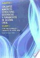 Matematicas II : Estrategia algebraicas y fundamentos de algebra lineal