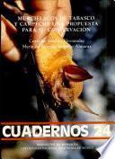 Murciélagos de Tabasco y Campeche