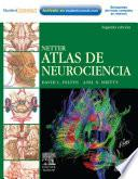 Netter. Atlas de Neurociencias