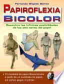 Papiroflexia bicolor / Bicolor Paper Folding