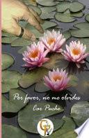 Por favor, no me olvides