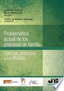Problemática actual de los procesos de familia. Especial atención a la prueba.