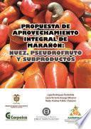 Propuesta tecnológica para el aprovechamiento integral del marañón: nuez, pseudofruto y subproductos