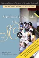 Servicios a la Comunidad. Cuerpo de Profesores Tecnicos de Formacion Profesional. Temario Educacion Infantil Ii. Volumen Iv. E-book