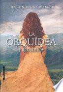SPA-ORQUIDEA PROHIBIDA