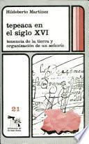 Tepeaca en el siglo XVI