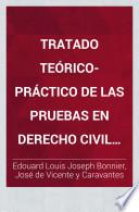 Tratado teorico-practico de las pruebas en derecho civil y penal