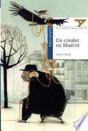 Un Condor En Madrid