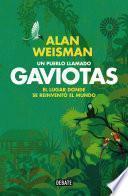 Un pueblo llamado Gaviotas